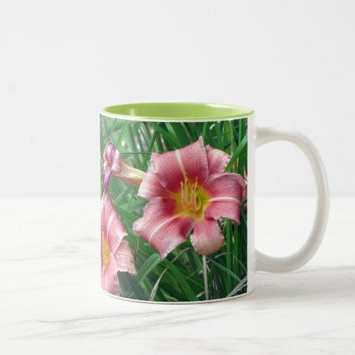 Rosa del melocotón del lirio de día taza de café