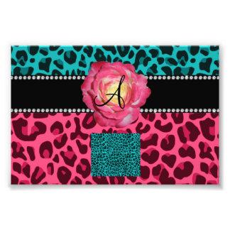 Rosa del monograma y modelo del leopardo de la fotos