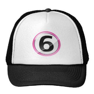 Rosa del número 6 gorras