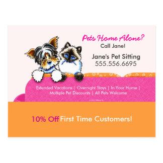 Rosa del sofá del gato de Yorkie del anuncio del Postal