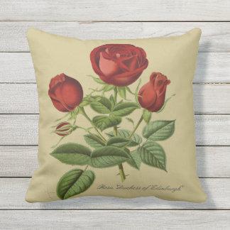 Rosa 'Duchess of Edinburgh' Outdoor Pillow 16x16