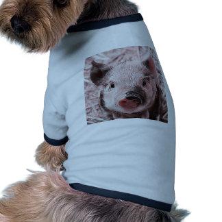 rosa dulce del cochinillo camisas de perritos