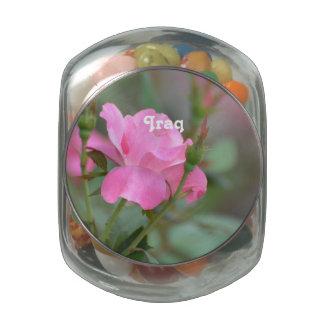 Rosa en colores pastel subió en Iraq Jarrones De Cristal