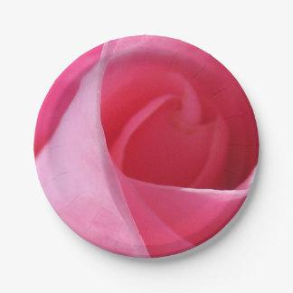 Rosa eterno platos de papel