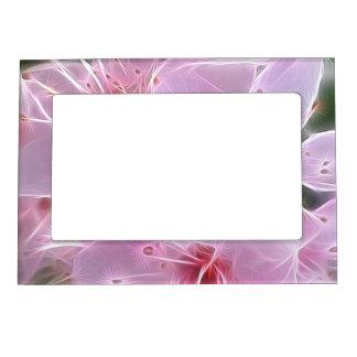 Rosa floral de los sueños 02 marcos magneticos para fotos