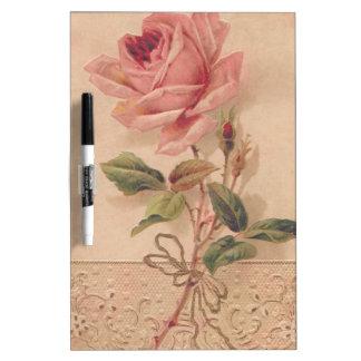 Rosa francés del Victorian subió Pizarra Blanca
