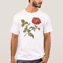 Rosa Gallica Beautiful Red Antique Rose Vintage T-Shirt