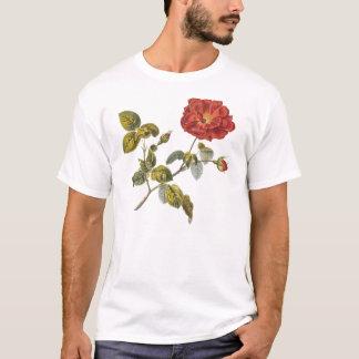 Rosa Gallica Beautiful Red Antique Rose Vintage T-Shirt