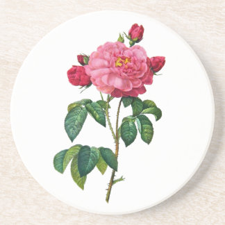 Rosa Gallica - Red Rose by Redoute Coaster