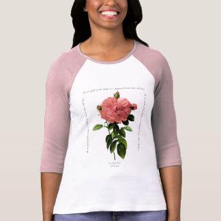 Rosa Gigantis de Redoute Poleras