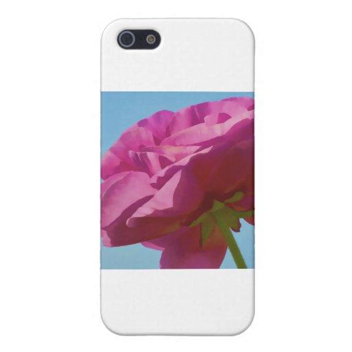 Rosa hecho excursionismo iPhone 5 fundas