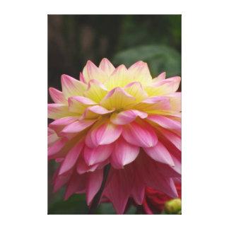 Rosa hermoso para amarillear la flor impresión en lienzo