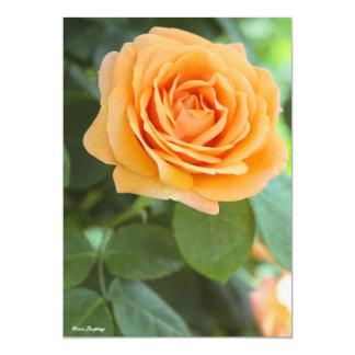 Rosa Looping Card