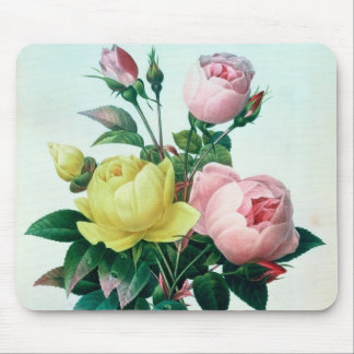 Rosa Lutea and Rosa Indica Mouse Pad