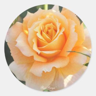 Rosa ` Manyo' (ten thousand leaves) Classic Round Sticker