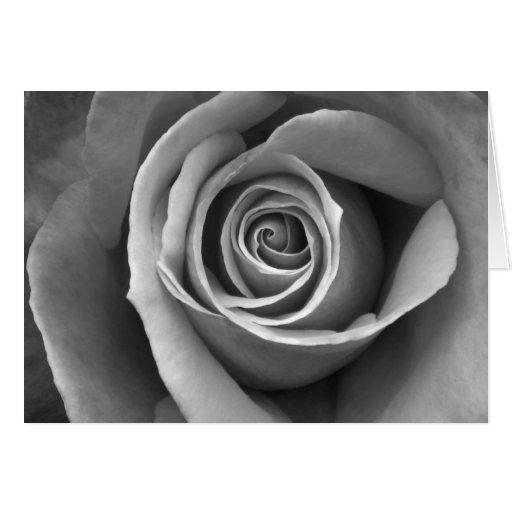 Rosa negro y blanco tarjeton