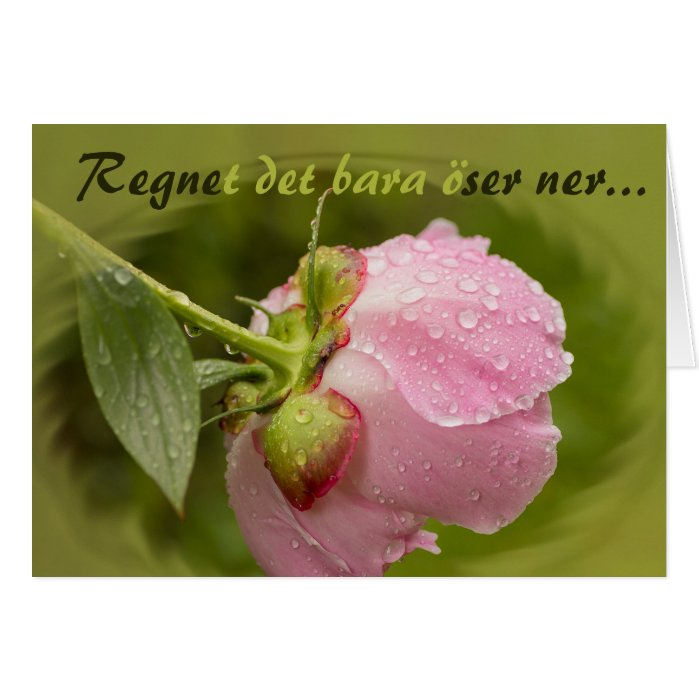 Rosa pion med glittrande vattendroppar CC0779 Greeting Card