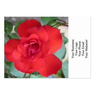 Rosa Roja Flor Large Business Cards (Pack Of 100)