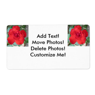 Rosa Roja Flor Shipping Label