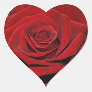 Rosa roja - Herzförmige pegatina
