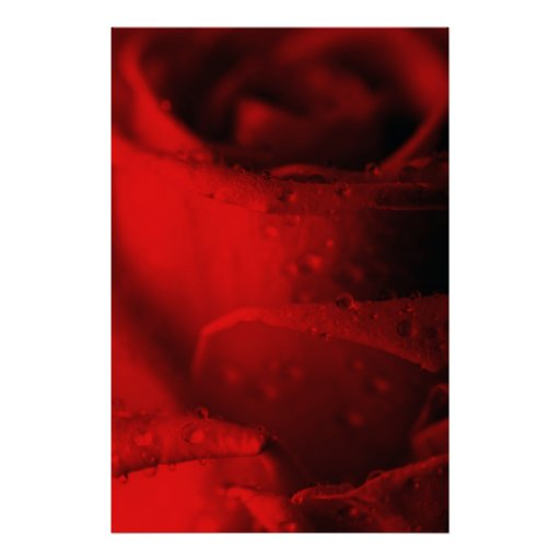 Rosa roja posters