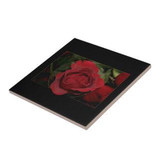 Rosa rojo #1 tejas