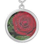 Rosa rojo #2 joyerias
