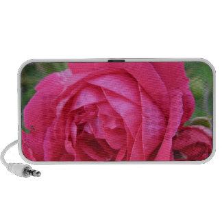 Rosa rojo notebook altavoces