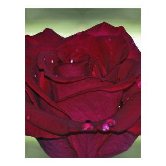 Rosa rojo apasionado membrete