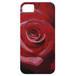 Rosa rojo aumentado Digital en la plena floración iPhone 5 Carcasa