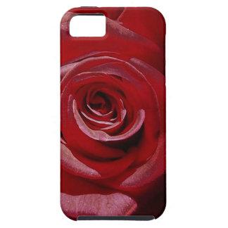 Rosa rojo aumentado Digital en la plena floración iPhone 5 Case-Mate Carcasas