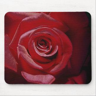 Rosa rojo aumentado Digital en la plena floración Tapetes De Raton