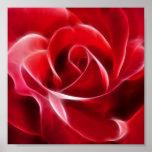 Rosa rojo bonito póster
