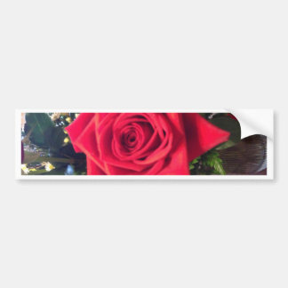 Rosa rojo etiqueta de parachoque