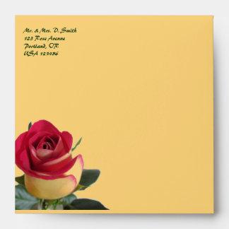 Rosa rojo clásico sobres