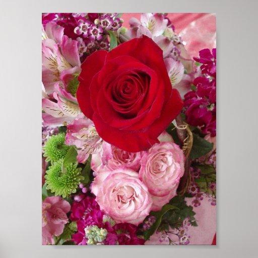 Rosa rojo con las flores y la impresión clasificad posters