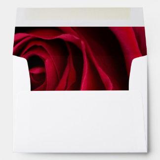 Rosa rojo de la flor sobre