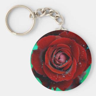 Rosa rojo de la gota de agua llavero redondo tipo pin