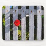 Rosa rojo de la valla de estacas blanca tapetes de raton