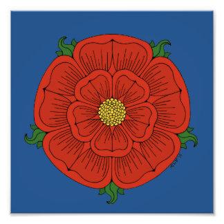 Rosa rojo de Lancaster Fotografía