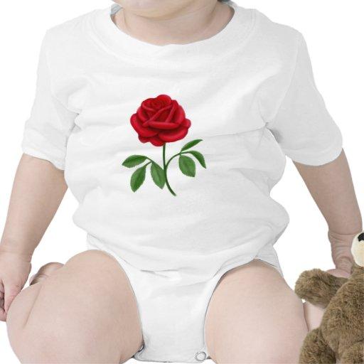 Rosa rojo de rubíes traje de bebé