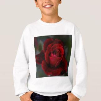 Rosa rojo del terciopelo del romance sudadera