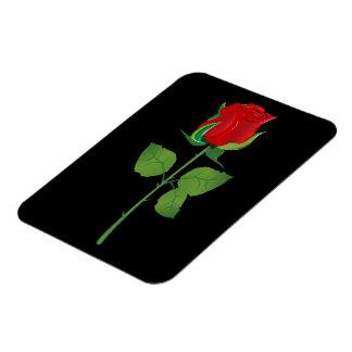 Rosa rojo del tronco largo rectangle magnet