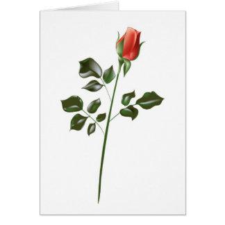 Rosa rojo del tronco largo tarjeta de felicitación