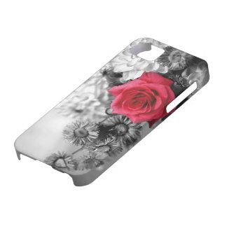 Rosa rojo elegante con el fondo negro y blanco iPhone 5 fundas