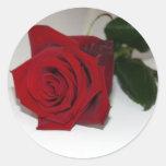 Rosa rojo en blanco etiqueta redonda