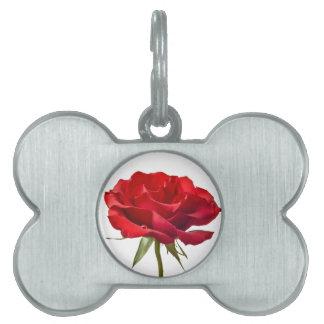 Rosa rojo en el blanco - plantilla modificada para placa de mascota