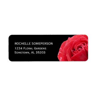 Rosa rojo en etiquetas negras del remite etiquetas de remite