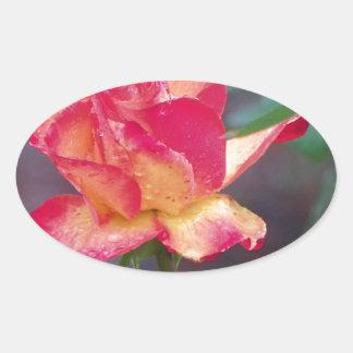 rosa rojo en la lluvia pegatina ovalada