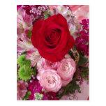 Rosa rojo enmarcado con las flores y los rosas cla postal